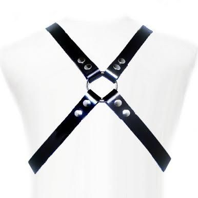 LEATHER-BODY-BASIC-HARNESS
